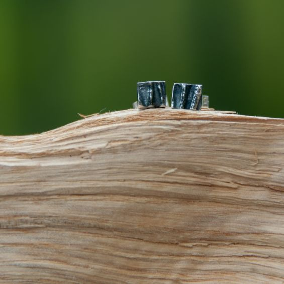 Ivy Ear Studs-Small-Oxidised and burnished